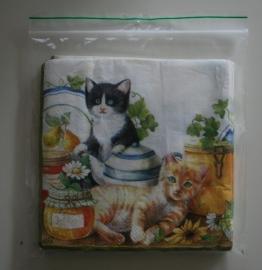Opbergzakjes voor  servetten (10 stuks)