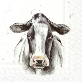 6570 Farmfriends cow