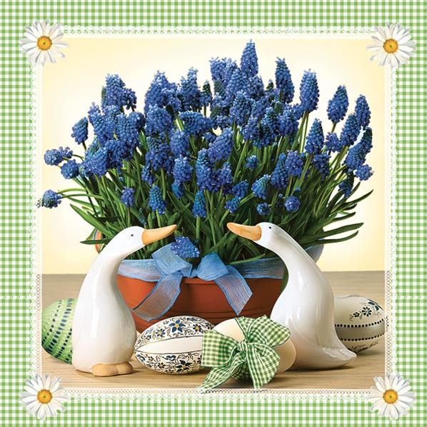 5963 Lavendel