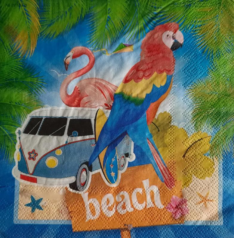 7184 Beach