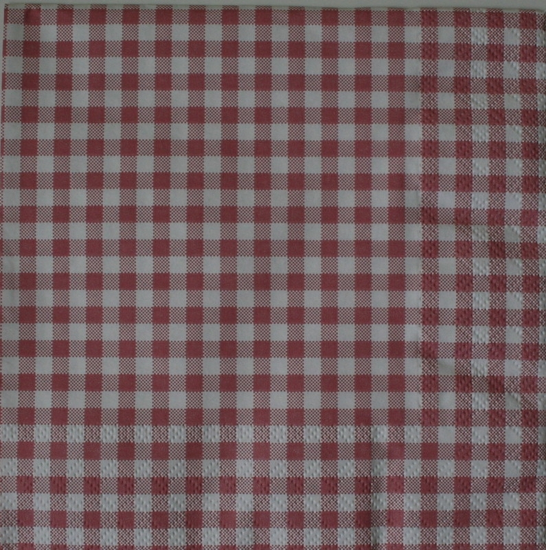 5062 Geruit roze/rood