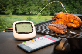 HerQs Thermometer - Easy BBQ Pro