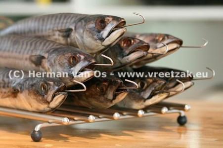 Makrelen van Herman van Os