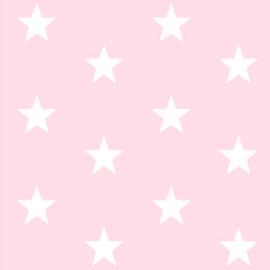 Grote sterren poederroze (012)