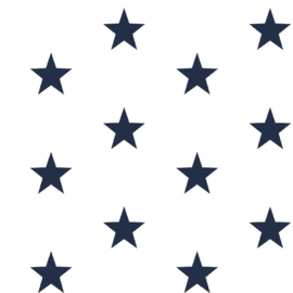 Katoen grote sterren wit/donkerblauw (102)
