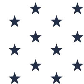 Grote sterren wit/donkerblauw (102)