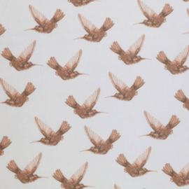 Katoen kolibri wit/bruin