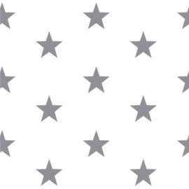 Grote sterren wit/grijs (113)
