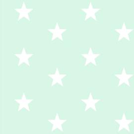 Grote sterren mint (011)