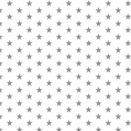 Kleine sterren wit/grijs (113)