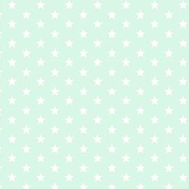 Katoen kleine sterren mint (011)