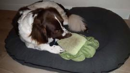 Hoes hondenkussen