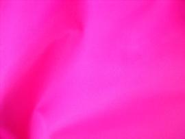 Fuchsia (6)