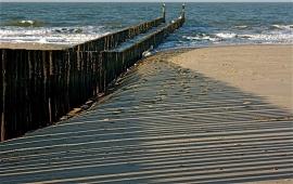 Nieuw ----echte foto aan Strand