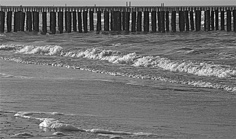 Nieuw---foto`s aan het strand