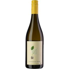 Señorio de Iniesta Sí Macabeo Sauvignon Blanc 2019 BIO