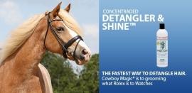 Detangler & Shine 118 ml