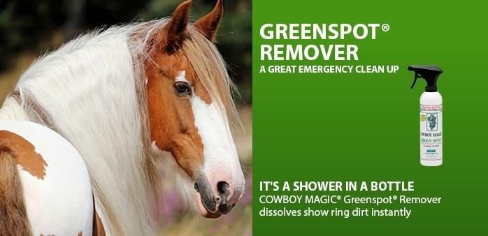 Greensport remover 944 ml