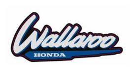 1996-2001 Honda Wallaroo Logo's