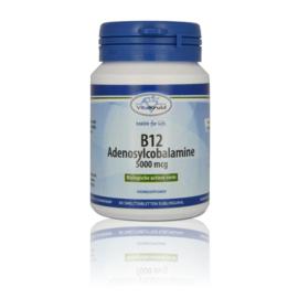 Vitakruid B 12 Adenosycobalamine 5000 mcg 60 tabletten.