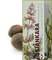 Muskaatnoot Myristica fragrans (zie ook Foelie) 11ml