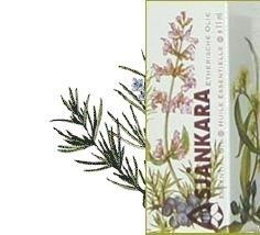 Rozemarijn-Rosmarinus officinalis ct verbenon 11ml