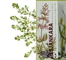 Gele tijm Thymus zygis ct linalol 5 ml