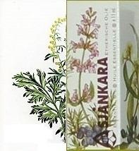 Alsem Artemisia absinthium 11ml