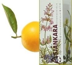 Bergamot Citrus Aurant schil/pers 11ml