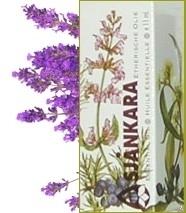 Lavendel- Lavendula Angustifolia (Fr) 11ml