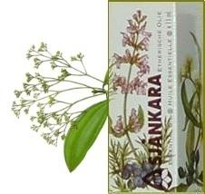 Saro Cinnamosma fragrans 11ml