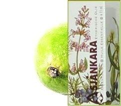Limoen Citrus Aurantifolia 11ml