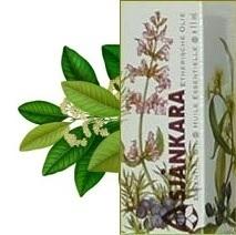 Niaouli Melaleuca viridiflora 11ml