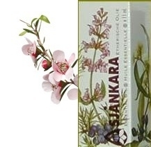 Kanuka Kunzea ericoides 11ml