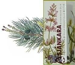 Den/Spar Siberische spar Abies sibirica 11ml