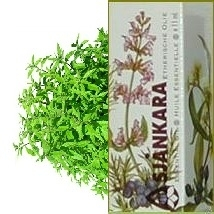 Verbena Lippia citriodora (syndest) 11ml