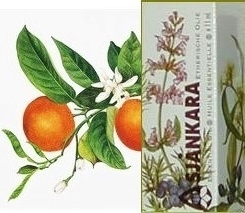 Neroli Citrus aurant Oranjebloesem ssp amara 2,5ml