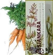 Wilde wortel Daucus carotta ssp maximus 11ml