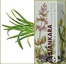 Citroenkruid Artemisia abrotanum 11ml