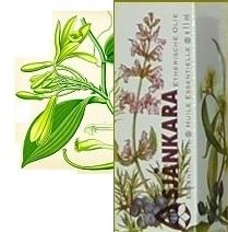 Vanilla planifolia (oleoresine) wateroplosbaar 5 ml