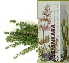 Witte tijm Thymus vulgaris ct thuyanol 5ml