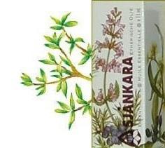Tijm Marokkaanse Thymus satureoides 11ml
