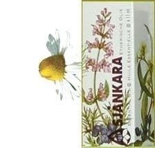 Echte Kamille Matricaria recutita 2,5ml