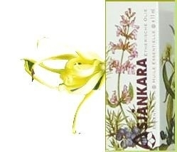 Ylang Ylang totum cananga odorata forma genuina 11ml