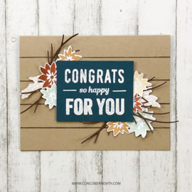 """540432  Concord & 9th Clear Stamps So Happy For You 4""""X6"""""""