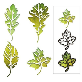 664970 Sizzix Thinlits Die Set Leaf Print Tim Holtz