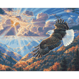 "464738 Paint By Number Kit Eagle Freedom 16""X20"""