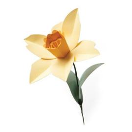 665107 Sizzix Bigz L Die - Daffodil Olivia Rose