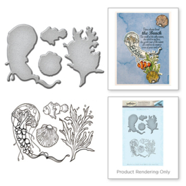 SDS047 Spellbinders Stamp & Die Set Jelly