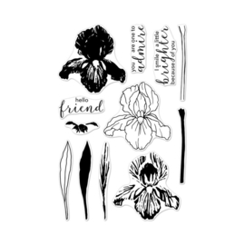 """573167 Hero Arts Color Layering Clear Stamps 4""""X6"""" Color Layering Iris"""